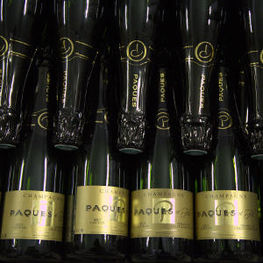 Champagne Paques Bottles in Cellar