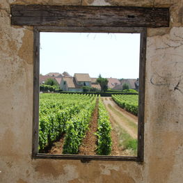 Window and Ruins in Beaune Cent Vignes Vineyard