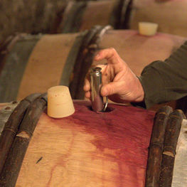 Xavier Durand and a Barrel of Corton Rognet