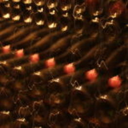 Champagne Resting in the Jacquinot Cellars