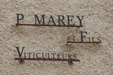 Domaine Pierre Marey Sign in Pernand-Vergelesses