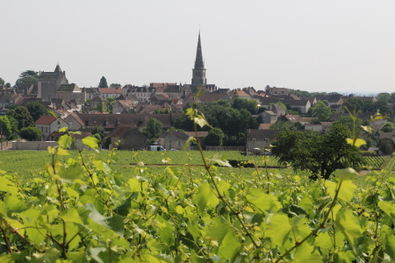 Meursault Village from Vineyards Again