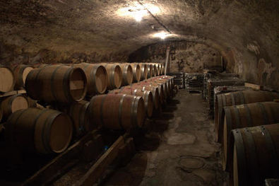 Domaine du Tunnel Stephane Robert Barrels in Cellar