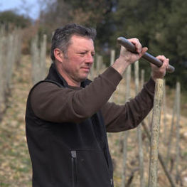 Domaine du Tunnel Stephane Robert Working in Cornas Vineyard